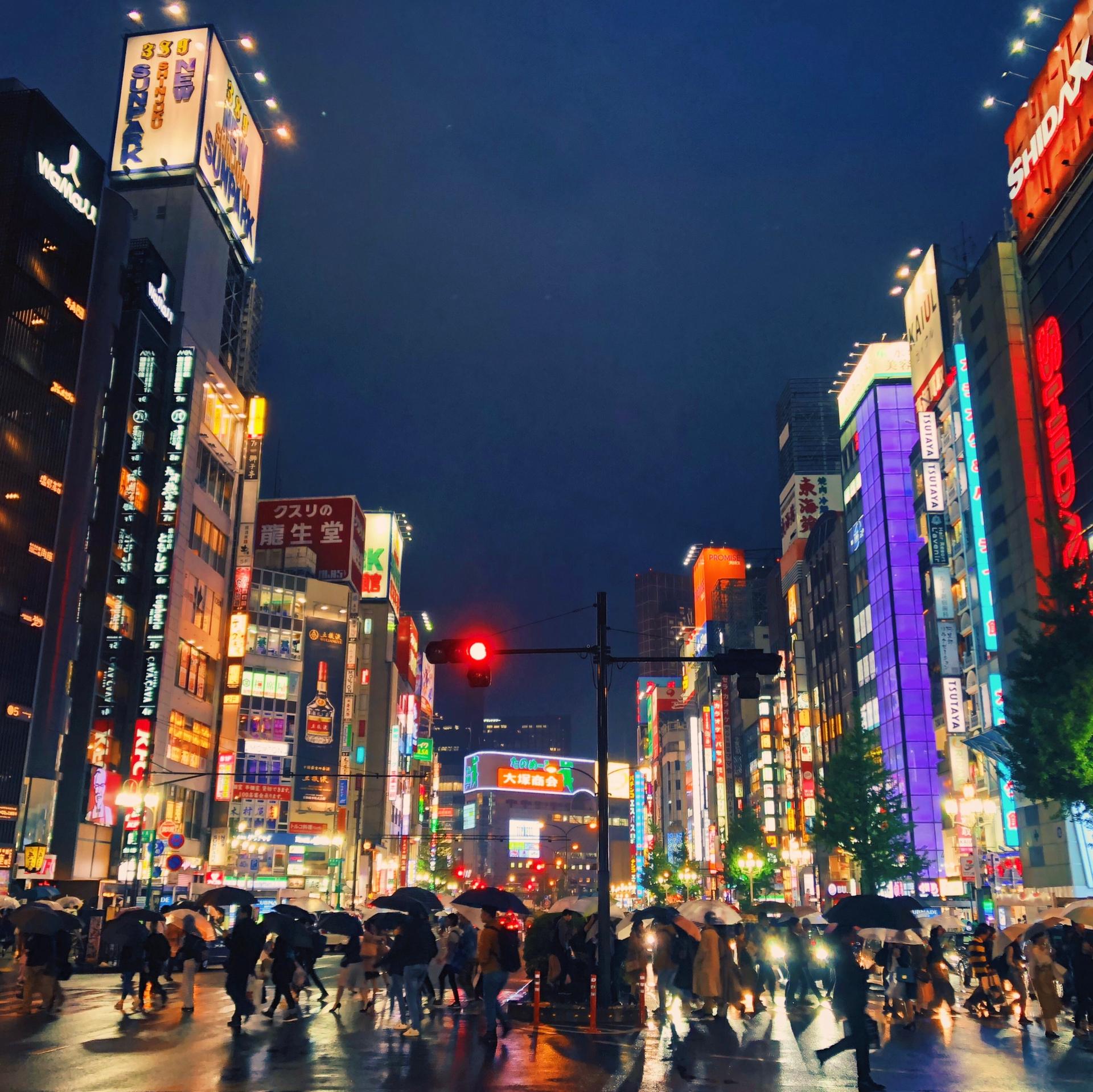大学 推薦 首都 東京